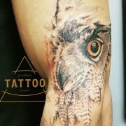owl tattoo, nature tattoo, tattoos for men, cool tattoos